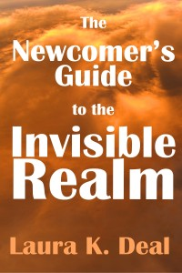 invisible realm cover 3a smaller copy